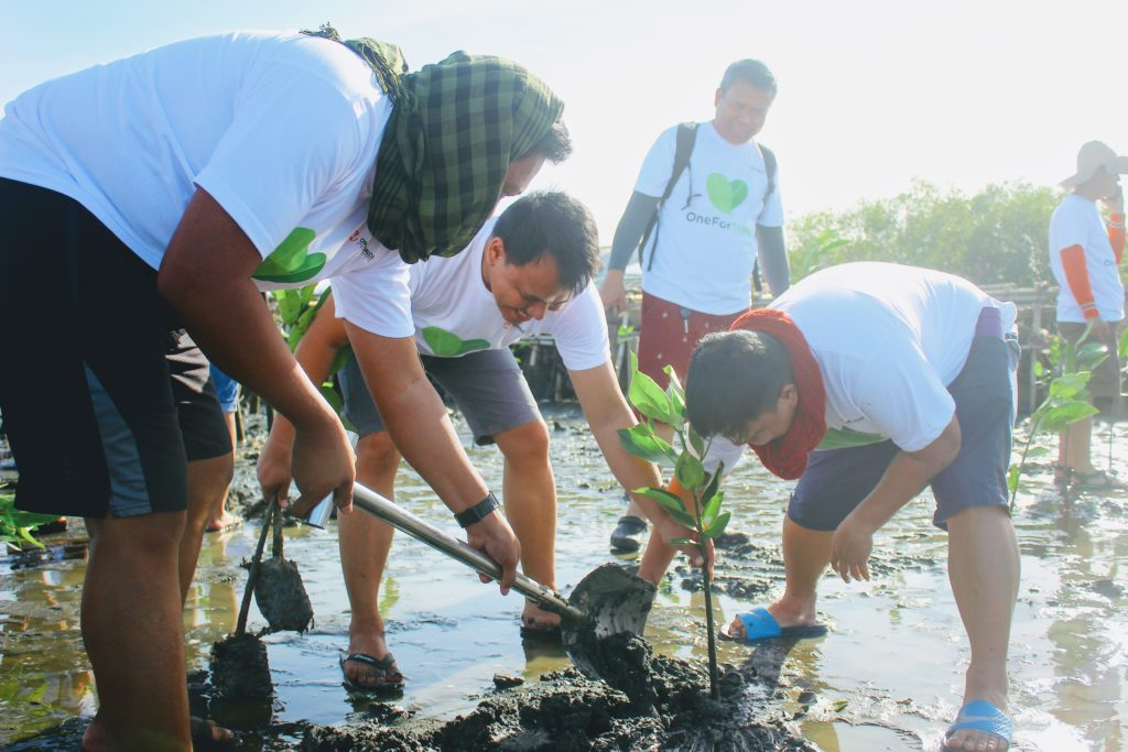 """""""One for Trees"""" volunteers plant 700 mangroves along the coasts of Brgy. Tibaguin, Hagonoy, Bulacan."""